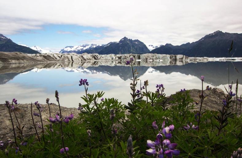 Sheridan Glacier | Cordova, Alaska